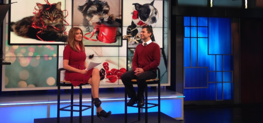 PAW In the News: Keeping the Howlidays Happy for Pets